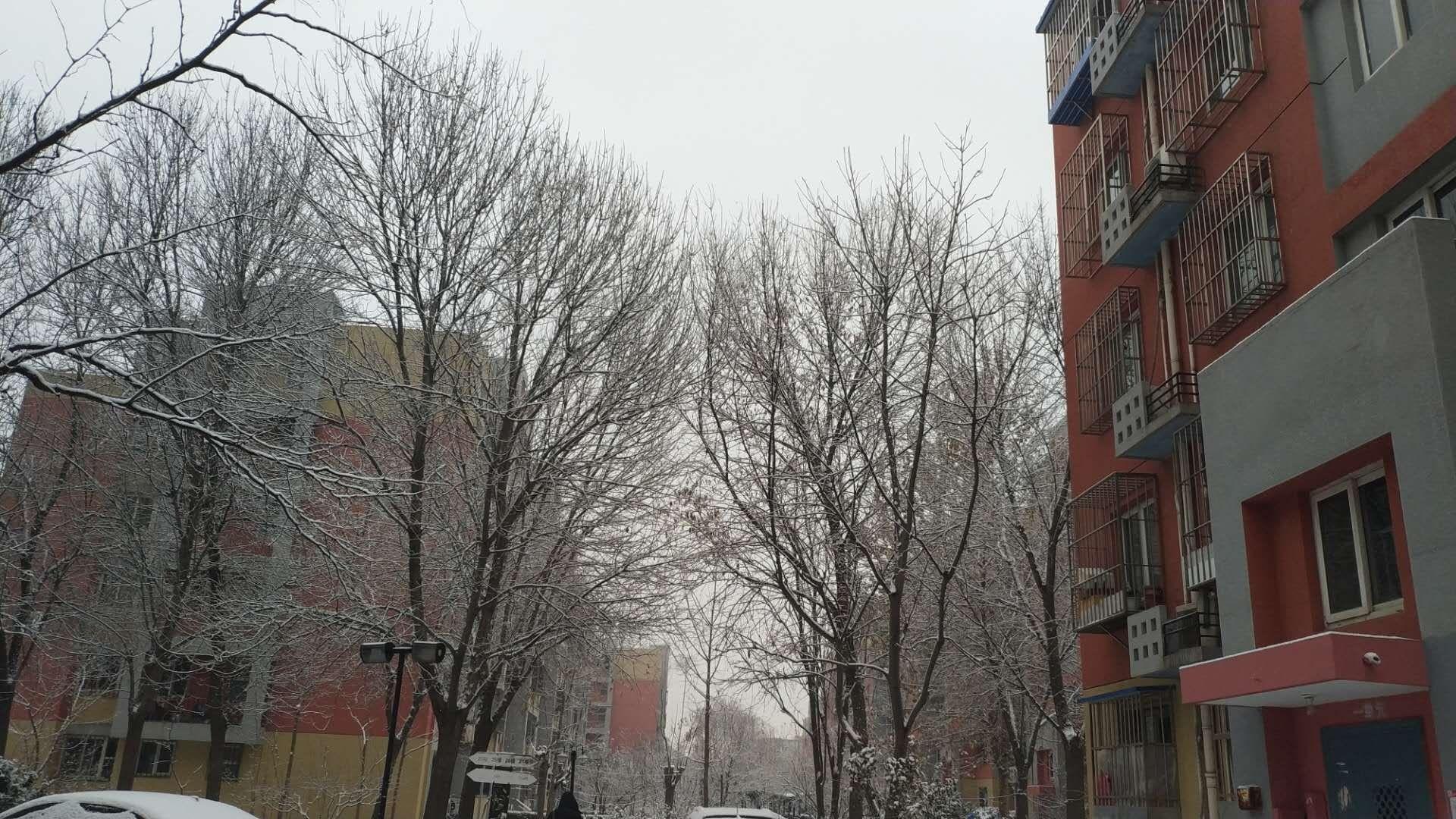 《长相思·雪》
